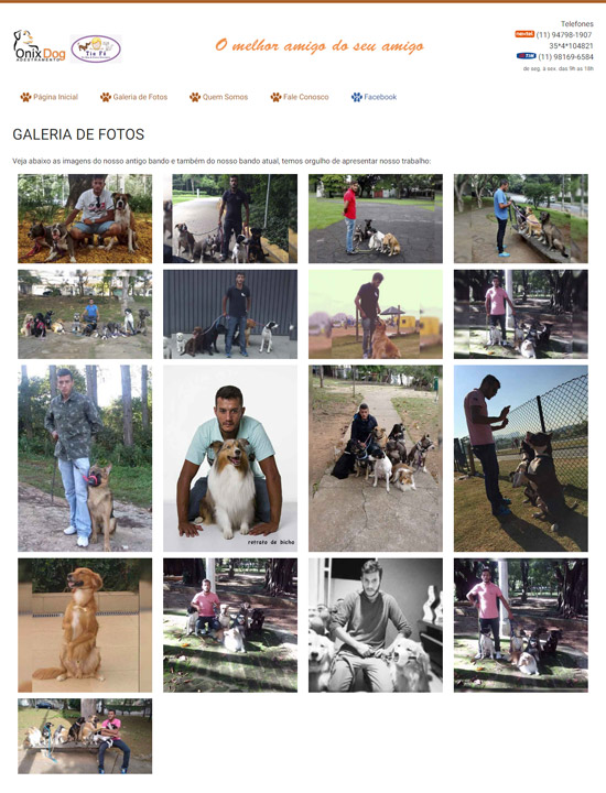 Cliente - Onix Dog - Adestramento - R2W Agência Web